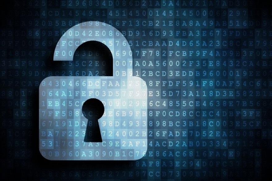 DK security pic.jpg